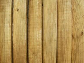 Dřevěný plot je pro mnohé samozřejmostí