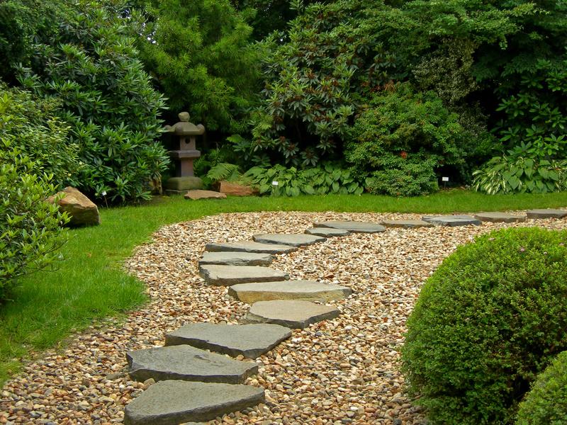 Čarobni vrt - Page 13 Zahrada